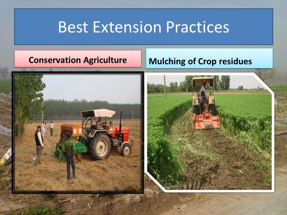 Best Extension Practices Conservation Agriculture Mulching of Crop residues