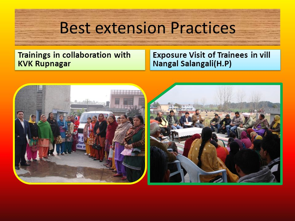 Best extension Practices Trainings in collaboration with KVK Rupnagar Exposure Visit of Trainees in vill Nangal Salangali(H.P)