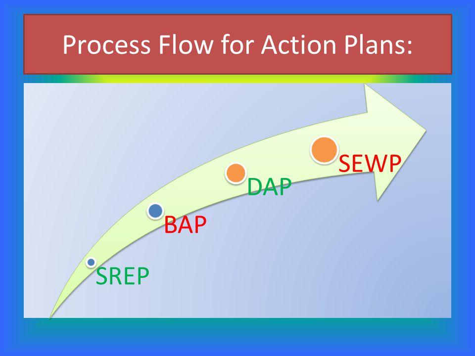 Process Flow for Action Plans: SREP BAP DAP SEWP