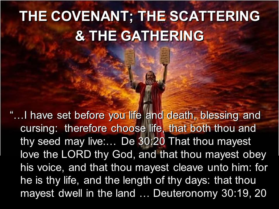 THE COVENANT Exodus 19:1-6 In the third month, when the children of Israel were gone forth out of the land of Egypt,..