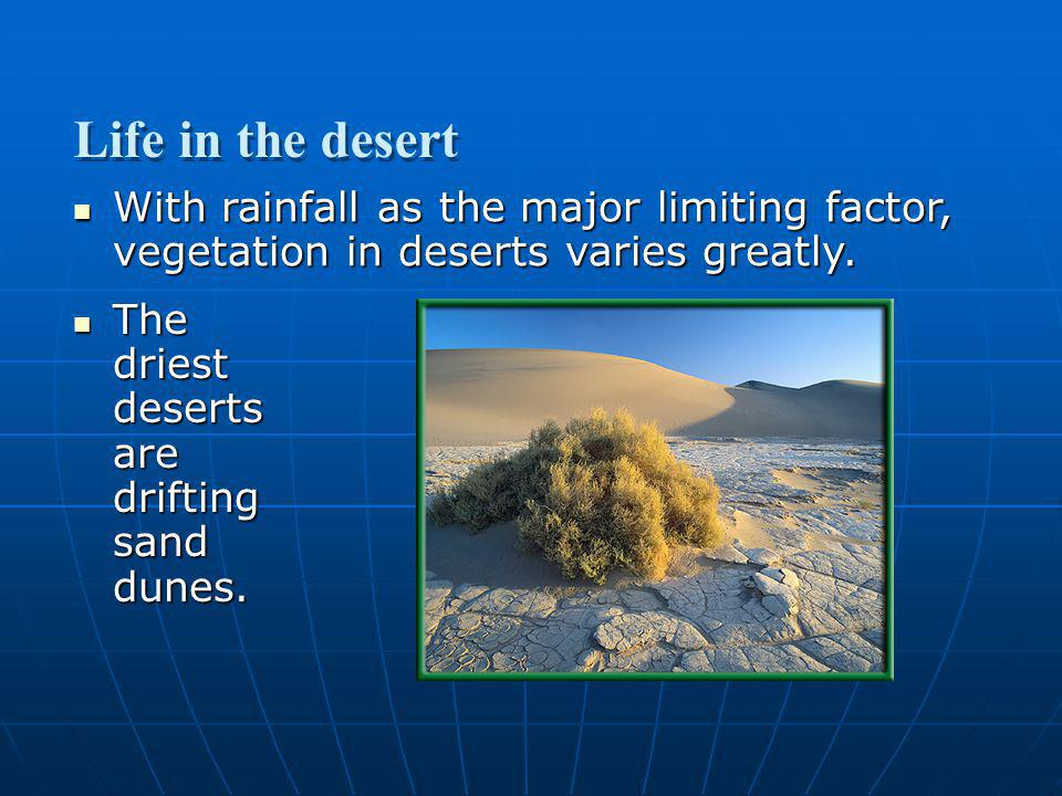 Section 3.2 Summary – pages 70-83 With rainfall as the major limiting factor, vegetation in deserts varies greatly. With rainfall as the major limitin