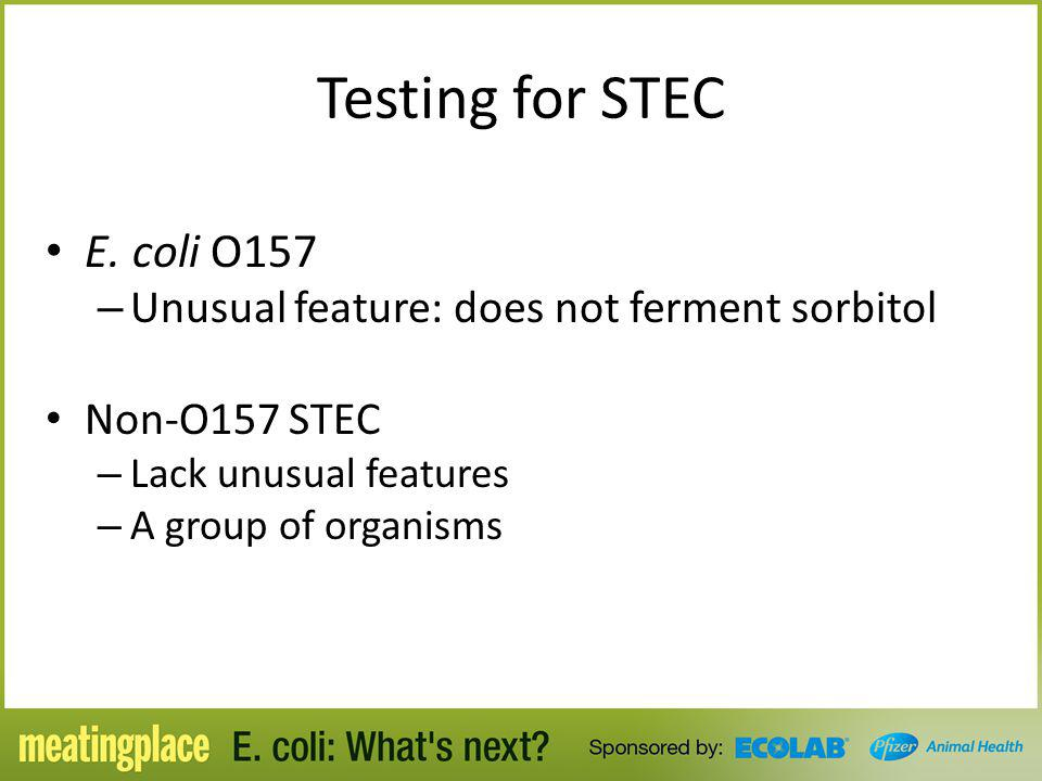 Testing for STEC E. coli O157 – Unusual feature: does not ferment sorbitol Non-O157 STEC – Lack unusual features – A group of organisms
