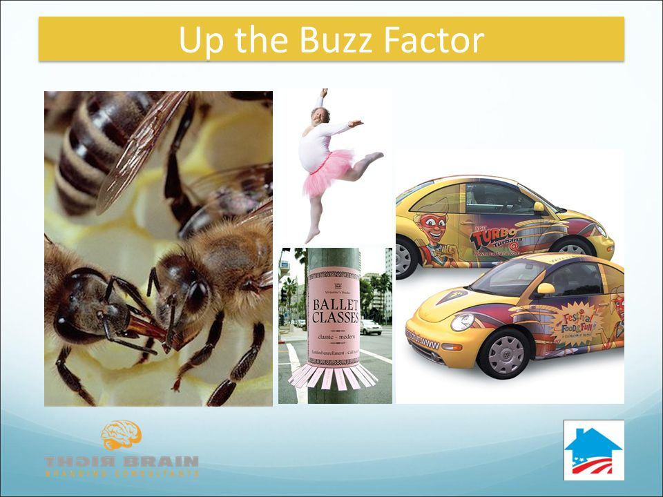 Up the Buzz Factor