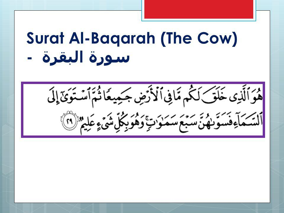 (Qur an, 99:1-4) When the earth is convulsed with its quaking