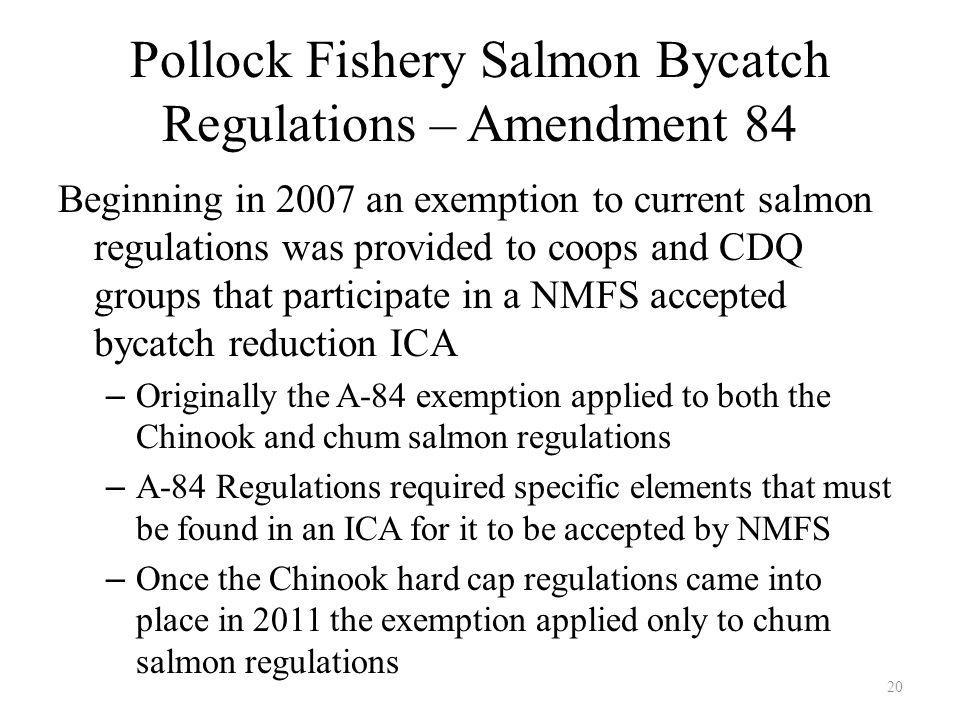 Pollock Fishery Salmon Bycatch Regulations – Amendment 84 Beginning in 2007 an exemption to current salmon regulations was provided to coops and CDQ groups that participate in a NMFS accepted bycatch reduction ICA – Originally the A-84 exemption applied to both the Chinook and chum salmon regulations – A-84 Regulations required specific elements that must be found in an ICA for it to be accepted by NMFS – Once the Chinook hard cap regulations came into place in 2011 the exemption applied only to chum salmon regulations 20