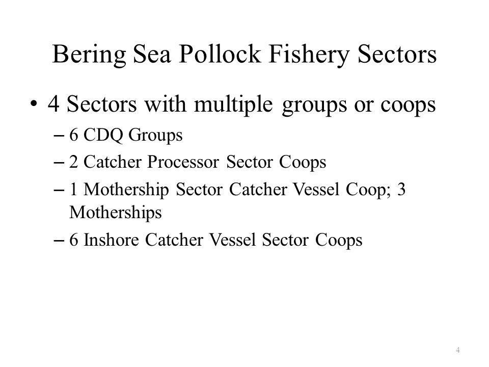 Bering Sea Pollock Fishery Sectors 4 Sectors with multiple groups or coops – 6 CDQ Groups – 2 Catcher Processor Sector Coops – 1 Mothership Sector Catcher Vessel Coop; 3 Motherships – 6 Inshore Catcher Vessel Sector Coops 4