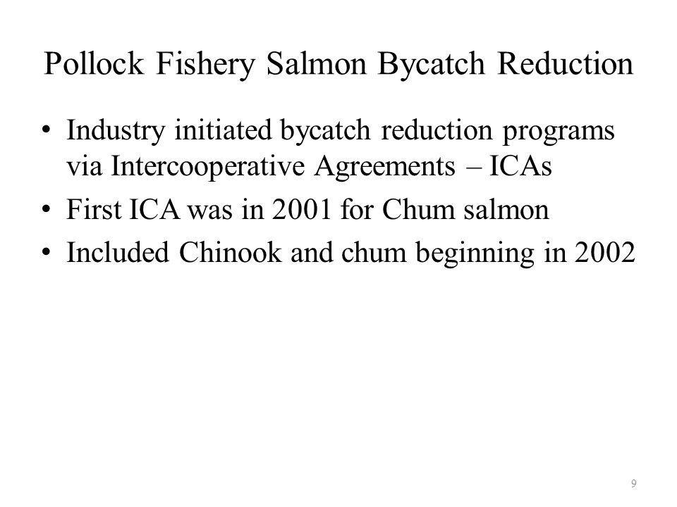 Pollock Fishery Salmon Bycatch Reduction Industry initiated bycatch reduction programs via Intercooperative Agreements – ICAs First ICA was in 2001 for Chum salmon Included Chinook and chum beginning in