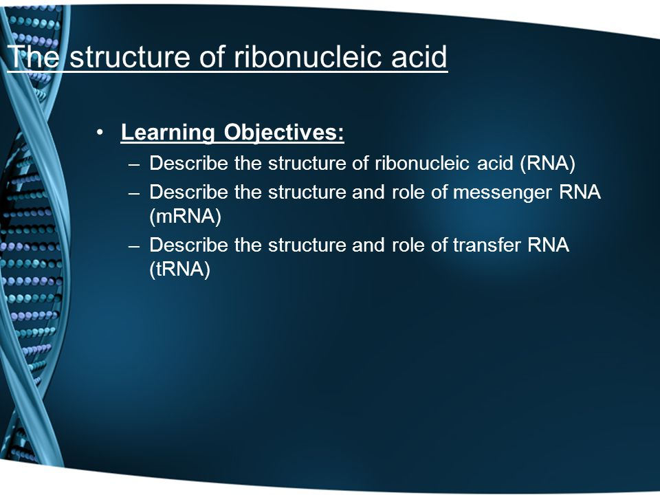 The structure of ribonucleic acid Learning Objectives: –Describe the structure of ribonucleic acid (RNA) –Describe the structure and role of messenger