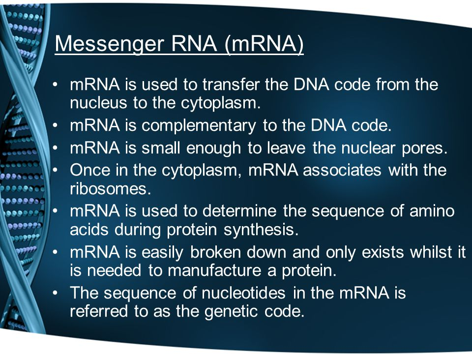 Messenger RNA (mRNA) mRNA is used to transfer the DNA code from the nucleus to the cytoplasm. mRNA is complementary to the DNA code. mRNA is small eno