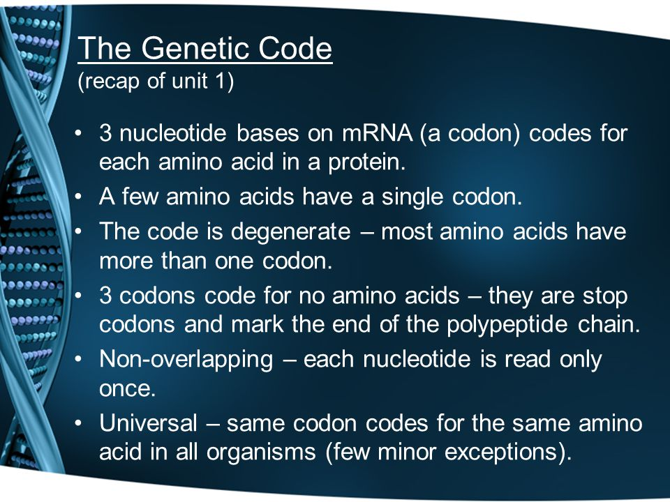 The Genetic Code (recap of unit 1) 3 nucleotide bases on mRNA (a codon) codes for each amino acid in a protein. A few amino acids have a single codon.