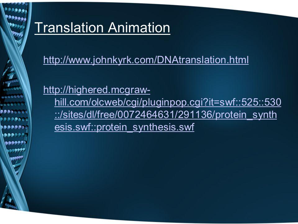 Translation Animation http://www.johnkyrk.com/DNAtranslation.html http://highered.mcgraw- hill.com/olcweb/cgi/pluginpop.cgi?it=swf::525::530 ::/sites/