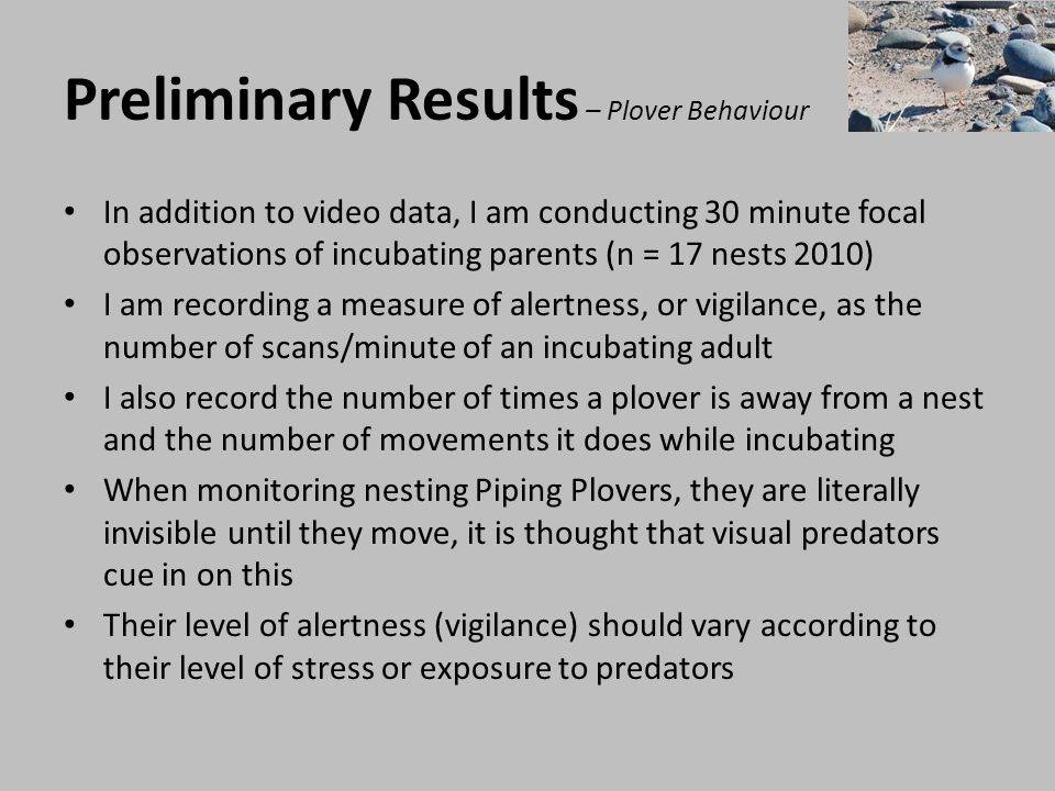 Preliminary Results – Plover Behaviour Welchs two-sample t-tests were used to determine whether the behaviour of incubating Piping Plovers differs between exclosed and unexclosed nests Small sample size n = 9 exclosed, n = 8 non-exclosed a- posteriori Power analysis conducted Table 2.
