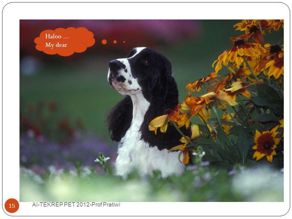 Fantasizing… AI-TEKREP PET 2012-Prof Pratiwi 15 Haloo... My dear