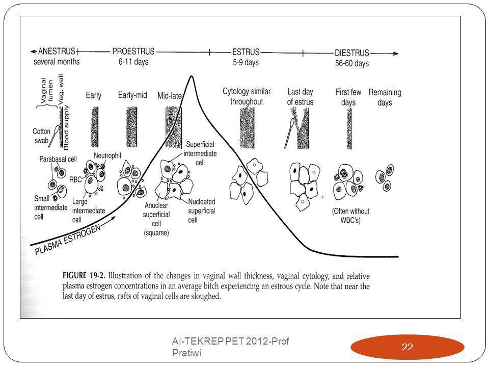 AI-TEKREP PET 2012-Prof Pratiwi 22
