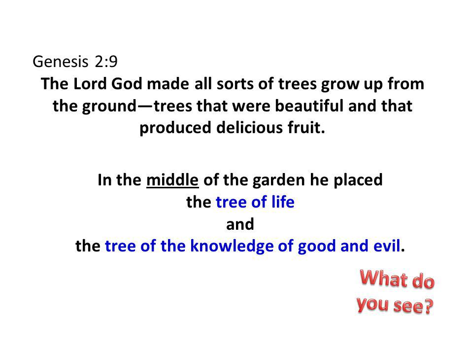 Genesis 2:9 The Lord God made all sorts of trees grow up from the groundtrees that were beautiful and that produced delicious fruit.
