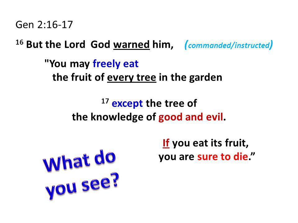 Gen 2:16-17 16 But the Lord God warned him, ( commanded/instructed ) You may freely eat the fruit of every tree in the garden 17 except the tree of the knowledge of good and evil.