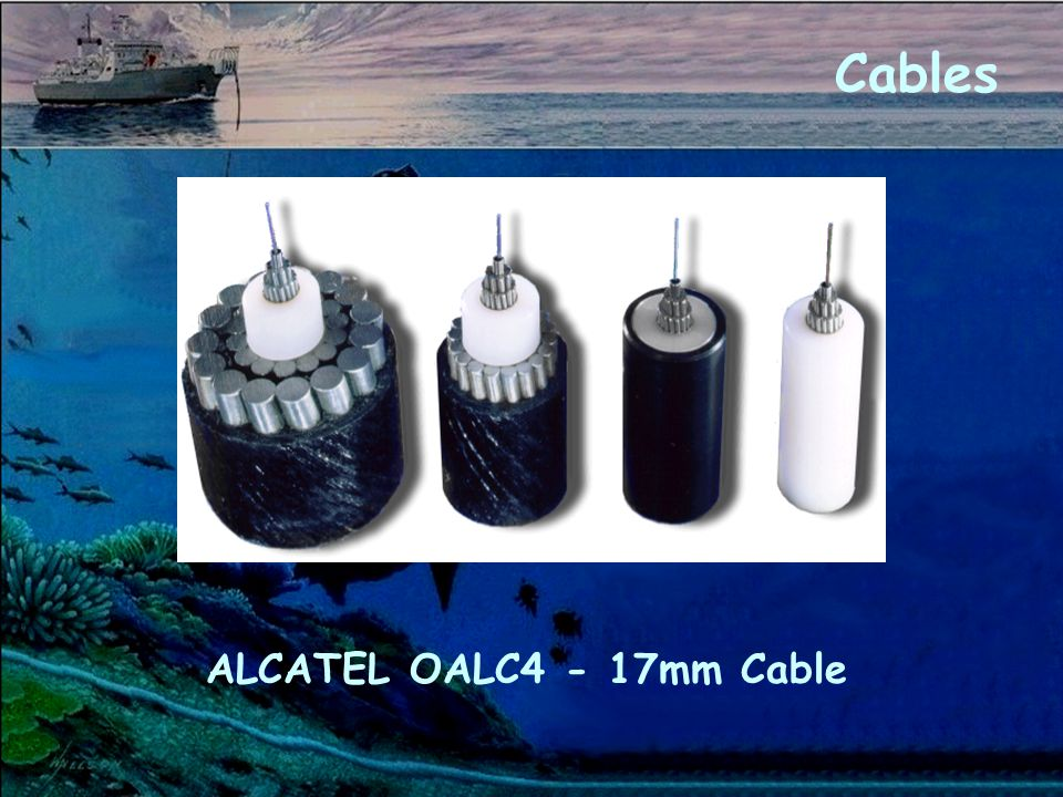 ALCATEL OALC4 - 17mm Cable Cables