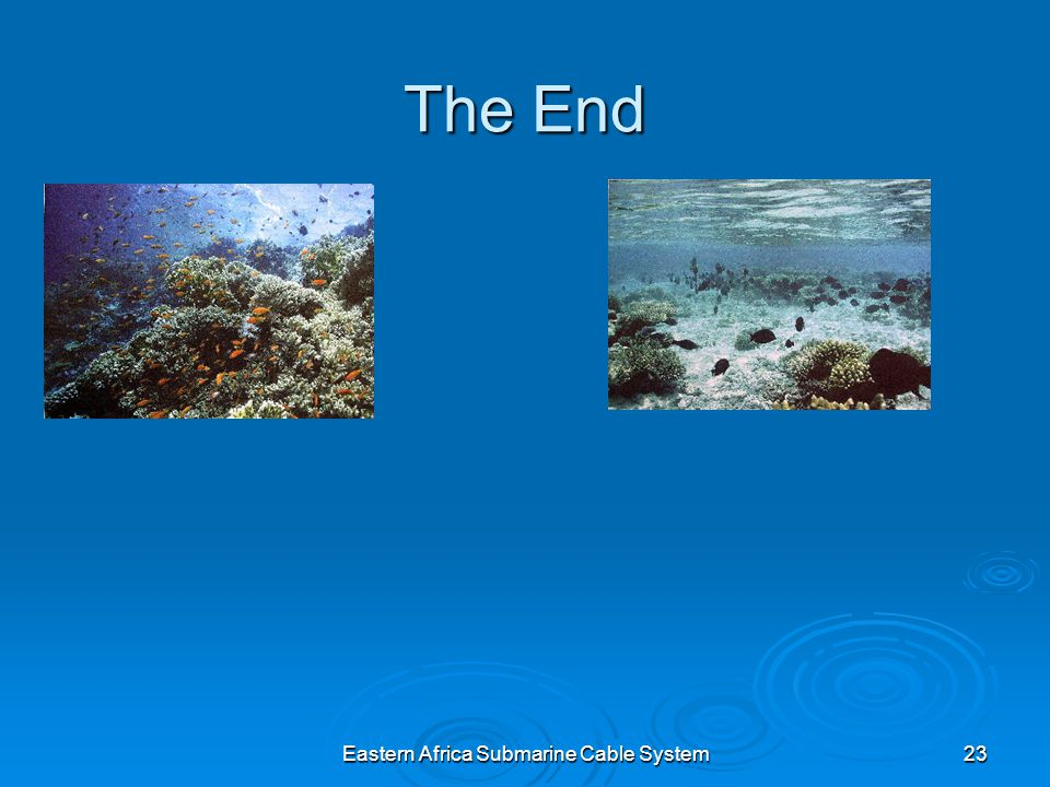 Eastern Africa Submarine Cable System23 The End