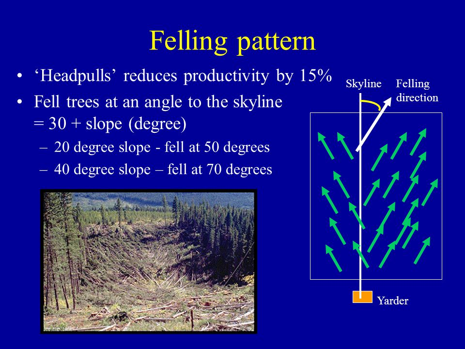Felling pattern Headpulls reduces productivity by 15% Fell trees at an angle to the skyline = 30 + slope (degree) –20 degree slope - fell at 50 degree