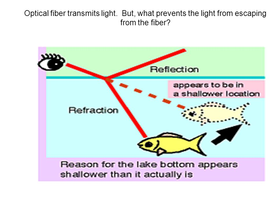 Optical fiber transmits light. But, what prevents the light from escaping from the fiber?