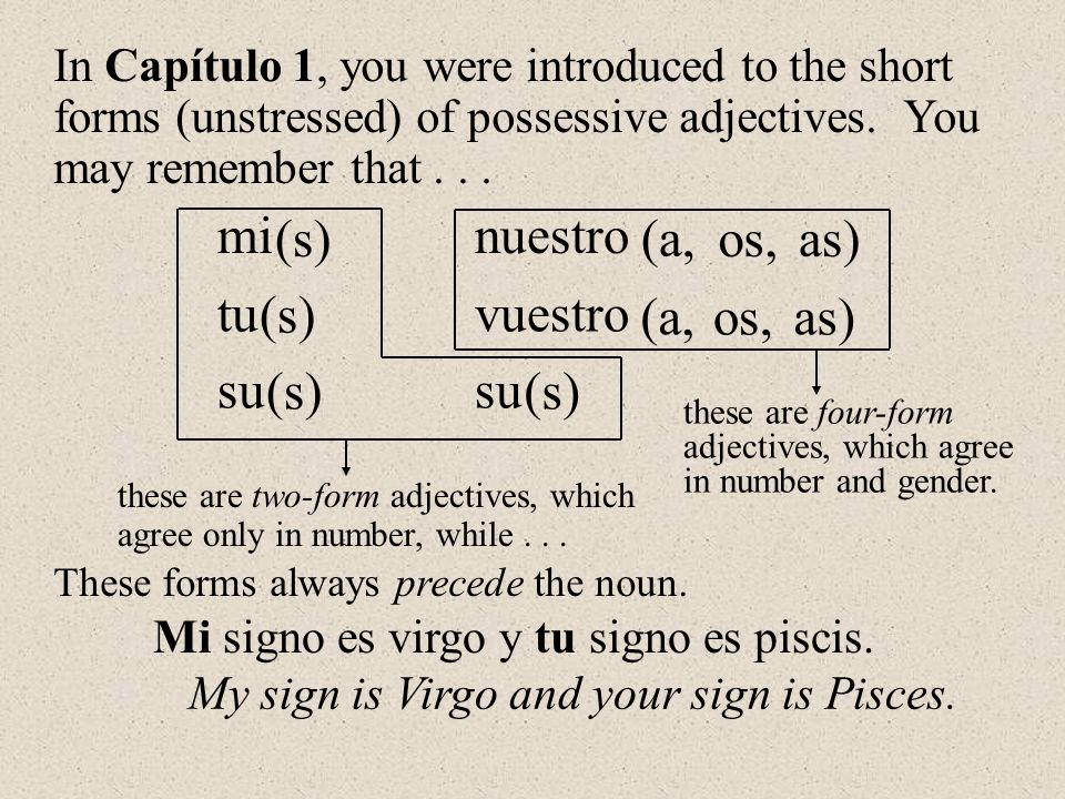 mi tu su nuestro vuestro su (s) os, (a, as) os,(a,as) (s) these are two-form adjectives, which agree only in number, while... these are four-form adje