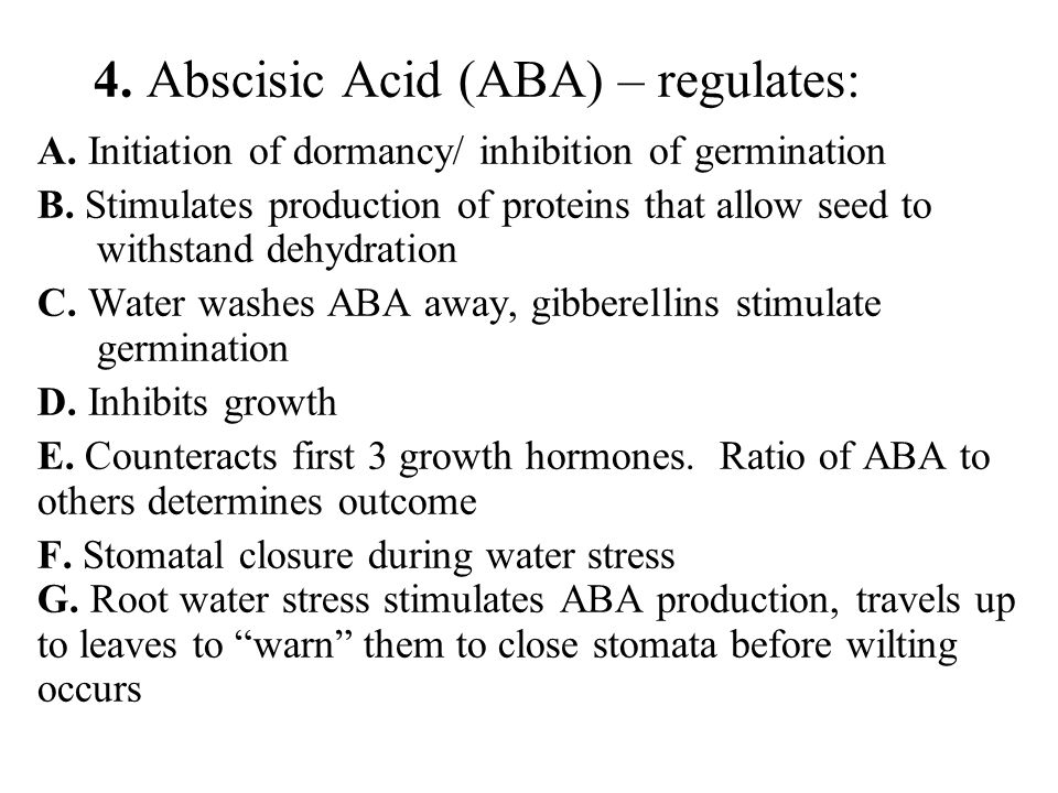 4. Abscisic Acid (ABA) – regulates: A. Initiation of dormancy/ inhibition of germination B. Stimulates production of proteins that allow seed to withs