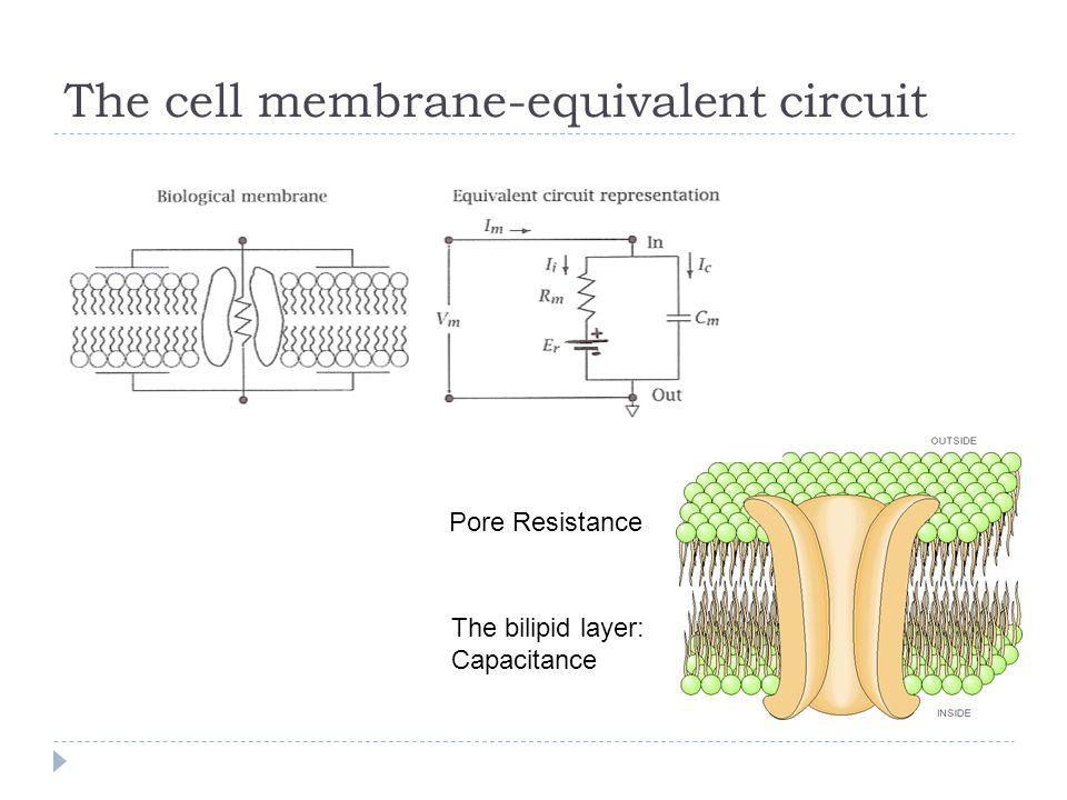 Semi-Infinite Cable: Constant Current I0I0
