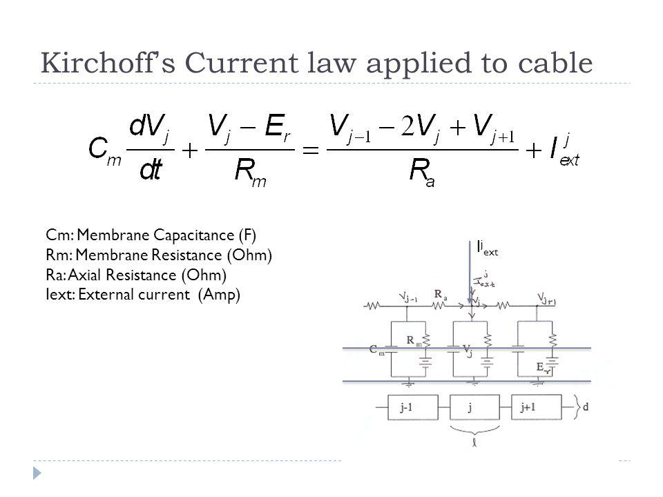 The Cable Equation C M : Specific Capacitance (F/cm 2 ) R M : Specific Resistance (Ohm-cm 2 ) R A : Specific Axial Resistance (Ohm-cm) i ext : Current density (Amp/cm 2 )
