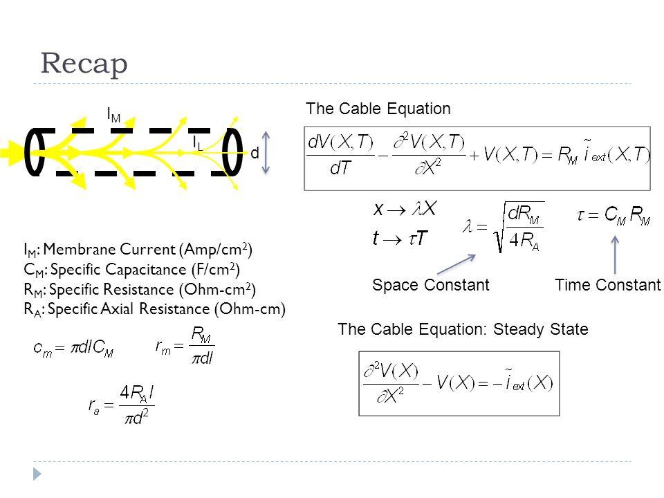 Recap IMIM ILIL d The Cable Equation I M : Membrane Current (Amp/cm 2 ) C M : Specific Capacitance (F/cm 2 ) R M : Specific Resistance (Ohm-cm 2 ) R A : Specific Axial Resistance (Ohm-cm) The Cable Equation: Steady State Space ConstantTime Constant