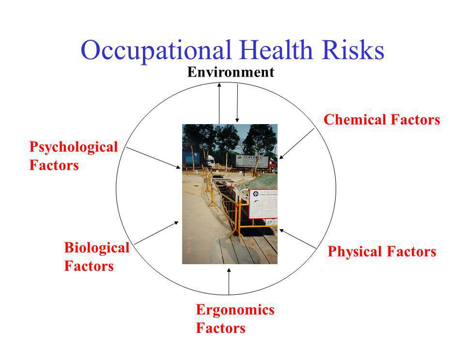 Occupational Health Risks Chemical Factors Physical Factors Ergonomics Factors Biological Factors Psychological Factors Environment