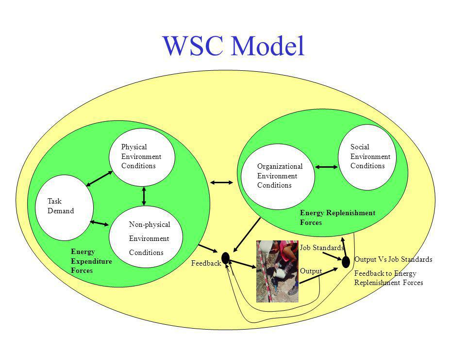 WSC Model Energy Expenditure Forces Energy Replenishment Forces Task Demand Physical Environment Conditions Non-physical Environment Conditions Organi