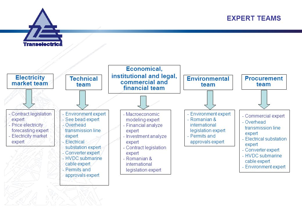 Electricity market team Technical team Economical, institutional and legal, commercial and financial team -Environment expert -See bead expert -Overhe