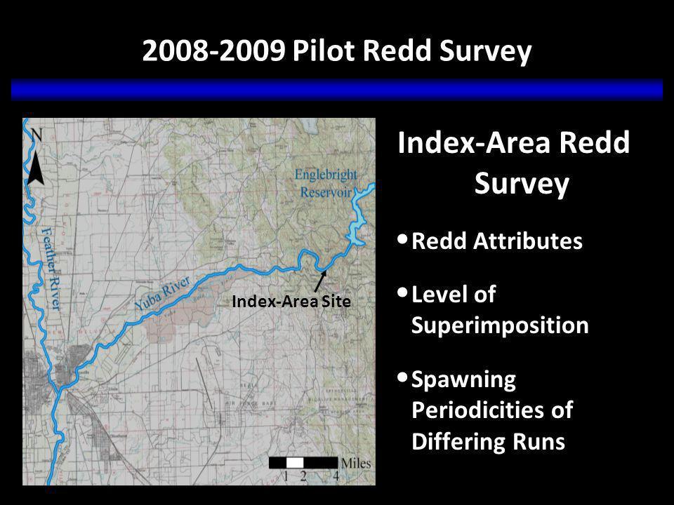 Preliminary Results Chinook Salmon Redd Density Highest density of Chinook salmon redds occurs above Hwy.