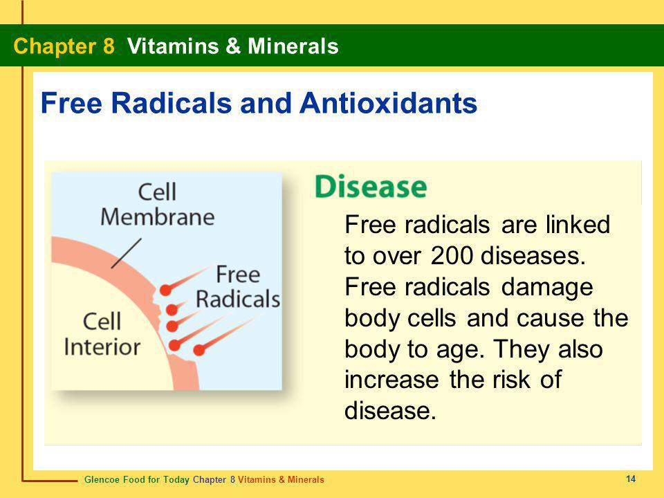 Glencoe Food for Today Chapter 8 Vitamins & Minerals Chapter 8 Vitamins & Minerals 15 As you watch the video clip answer the following questions: 1.What create free radicals in the body.