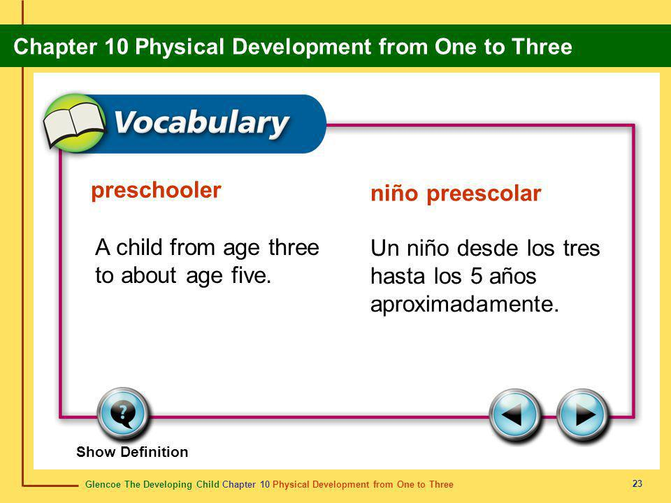 Glencoe The Developing Child Chapter 10 Physical Development from One to Three Chapter 10 Physical Development from One to Three 23 preschooler niño preescolar A child from age three to about age five.