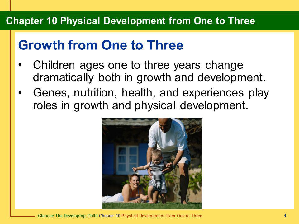 Glencoe The Developing Child Chapter 10 Physical Development from One to Three Chapter 10 Physical Development from One to Three 4 Growth from One to Three Children ages one to three years change dramatically both in growth and development.