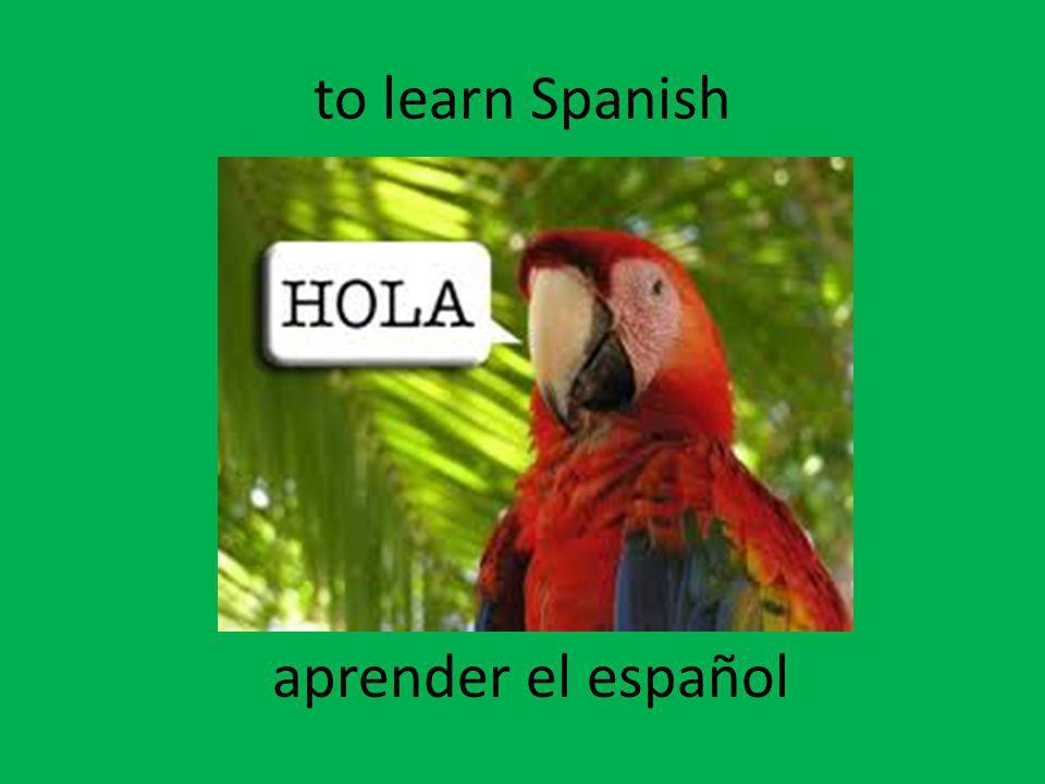 to learn Spanish aprender el español