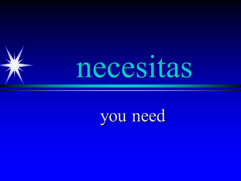 necesito I need
