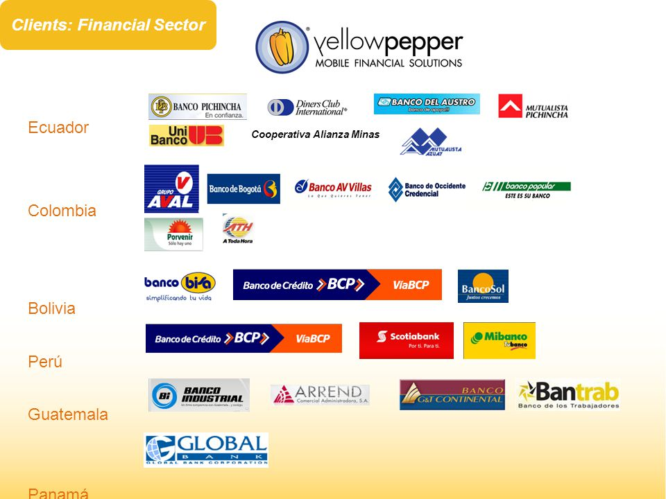 Ecuador Colombia Bolivia Perú Guatemala Panamá Cooperativa Alianza Minas Clients: Financial Sector