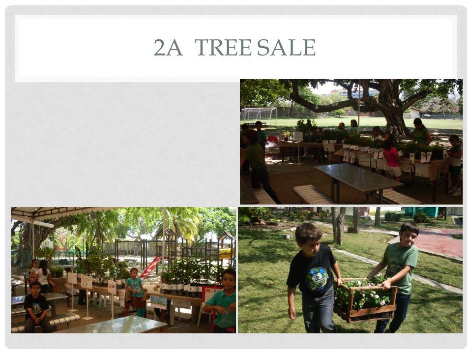 2A TREE SALE