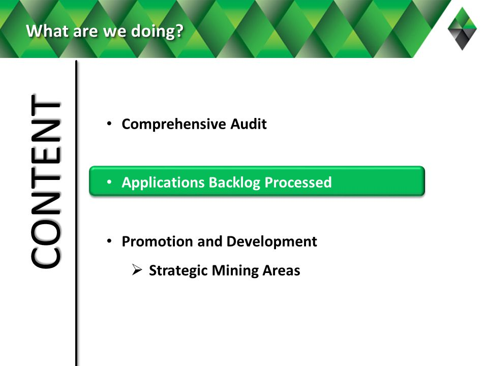 Comprehensive Audit Applications Backlog Processed Promotion and Development Strategic Mining Areas What are we doing.