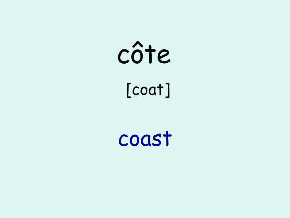 côte [coat] coast