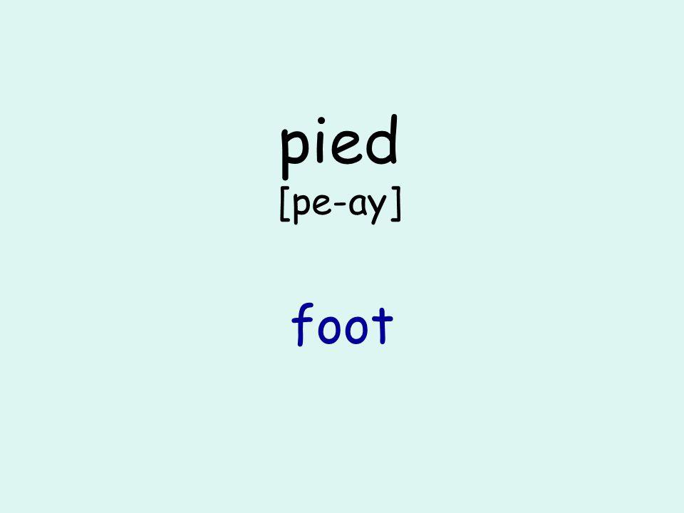 pied [pe-ay] foot