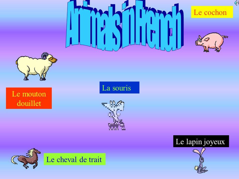 La souris Le cochon Le mouton douillet Le cheval de trait Le lapin joyeux