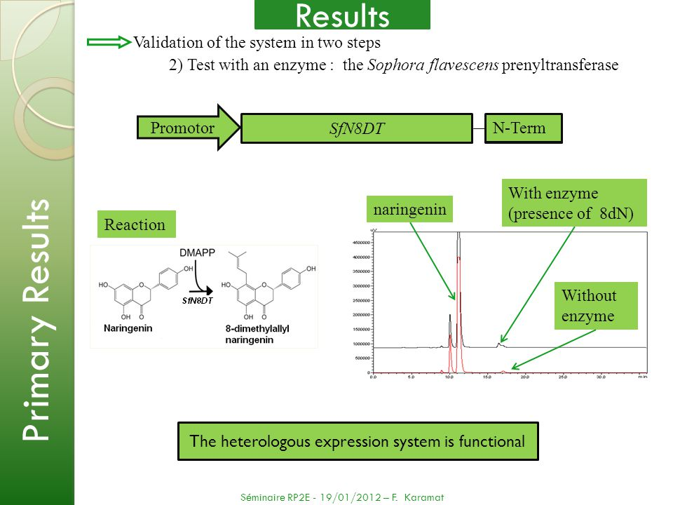 The heterologous expression system is functional Reaction Without enzyme With enzyme (presence of 8dN) naringenin Validation of the system in two step