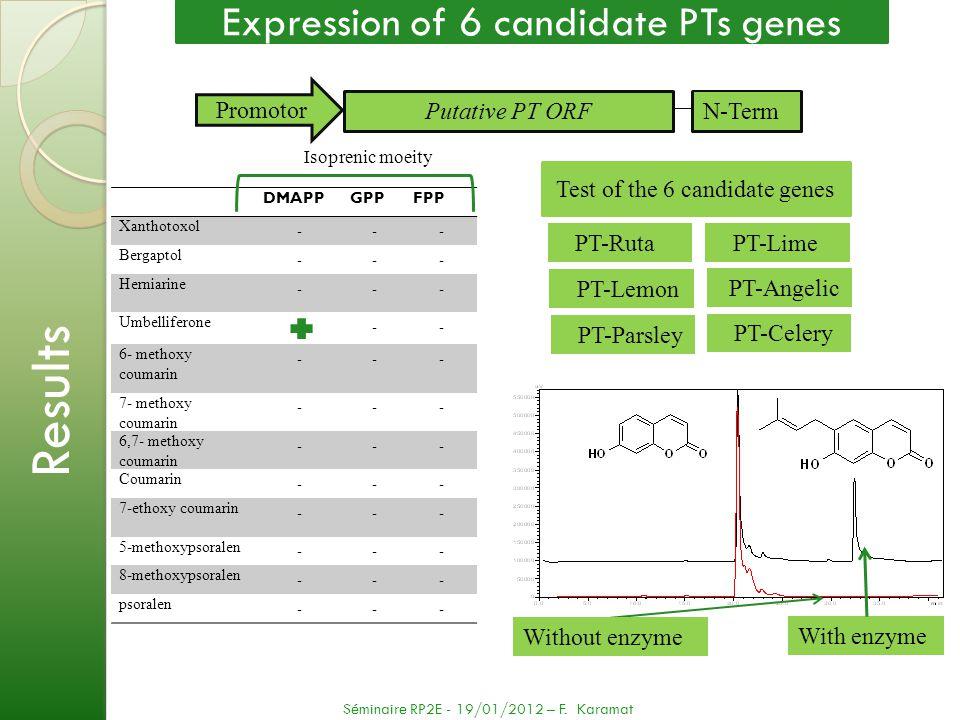Test of the 6 candidate genes DMAPPGPPFPP Xanthotoxol --- Bergaptol --- Herniarine --- Umbelliferone -- 6- methoxy coumarin --- 7- methoxy coumarin --