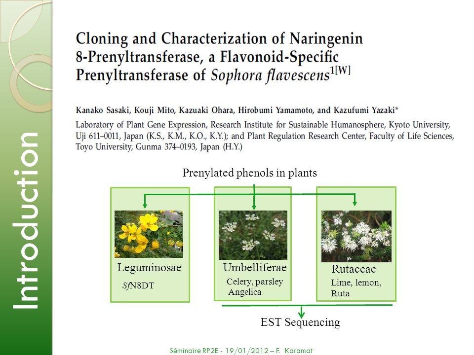 EST Sequencing Introduction Séminaire RP2E - 19/01/2012 – F. Karamat Prenylated phenols in plants Leguminosae Rutaceae Umbelliferae SfN8DT Celery, par
