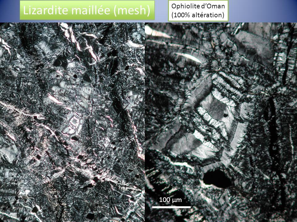 100 µm Lizardite maillée (mesh) Ophiolite dOman (100% altération)
