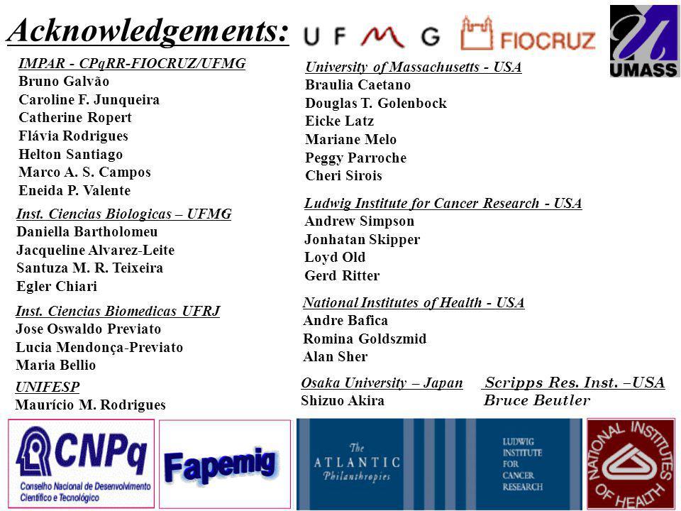 Acknowledgements: IMPAR - CPqRR-FIOCRUZ/UFMG Bruno Galvão Caroline F.