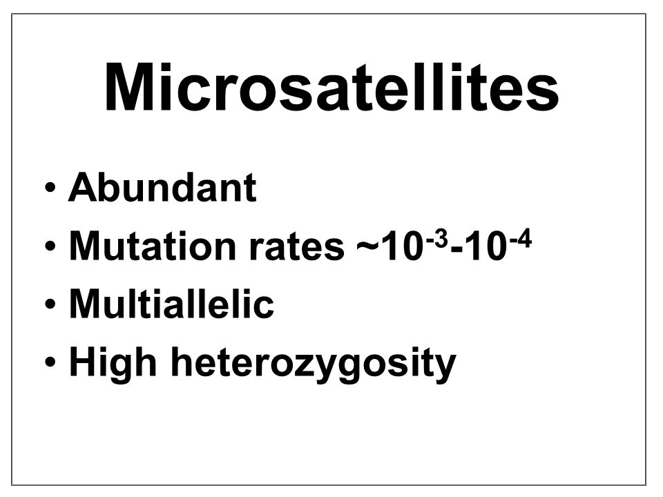 Microsatellites Abundant Mutation rates ~10 -3 -10 -4 Multiallelic High heterozygosity